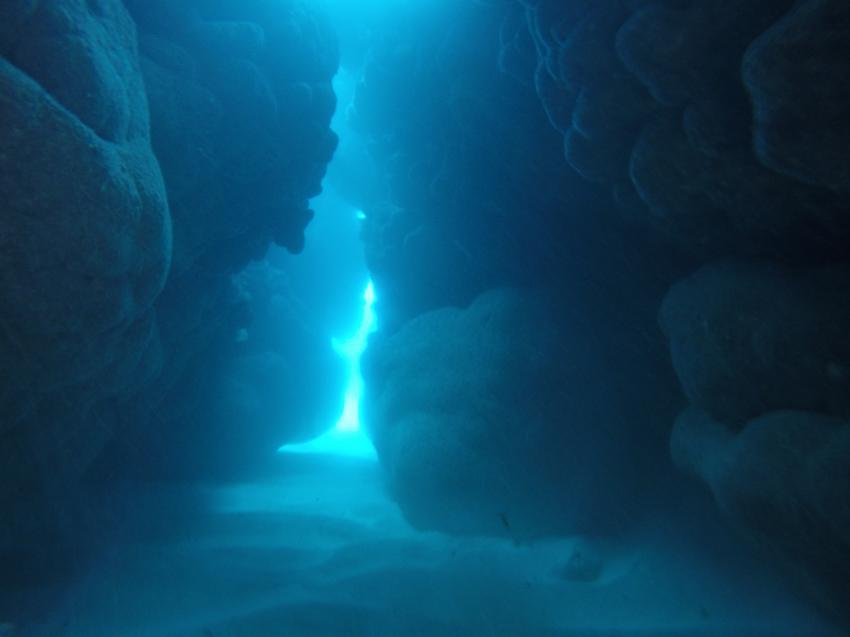 Rondana , Grotten, Dressel Divers Club, Bavaro, Dominikanische Republik