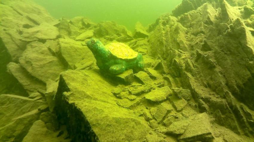 Deko-Schildkröte, Rursee, Deutschland, Nordrhein-Westfalen