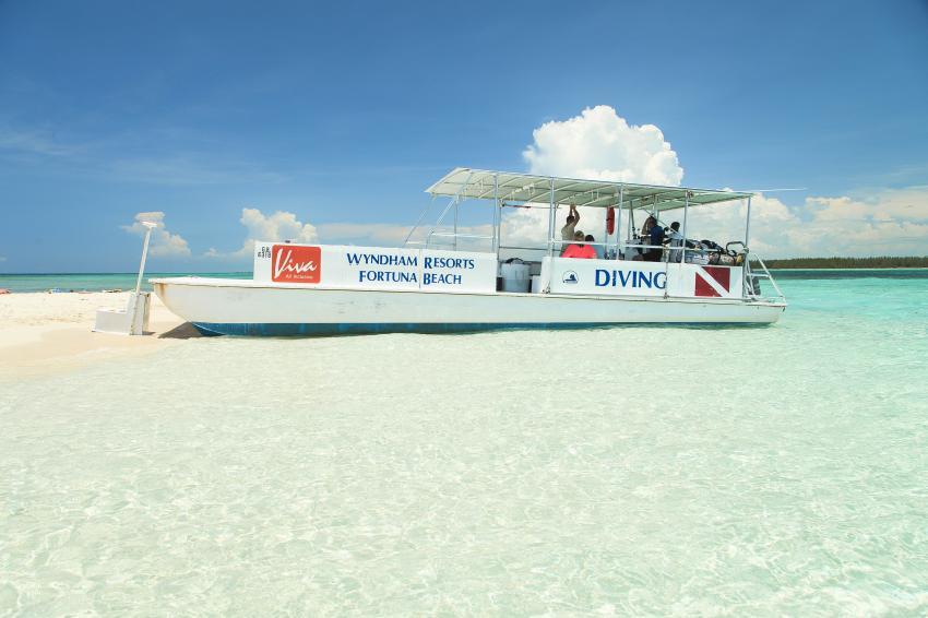 Our boat, boat Grand Bahama, catamaran, shark diving, Reef Oasis Viva Bahamas, Grand Bahama, Bahamas