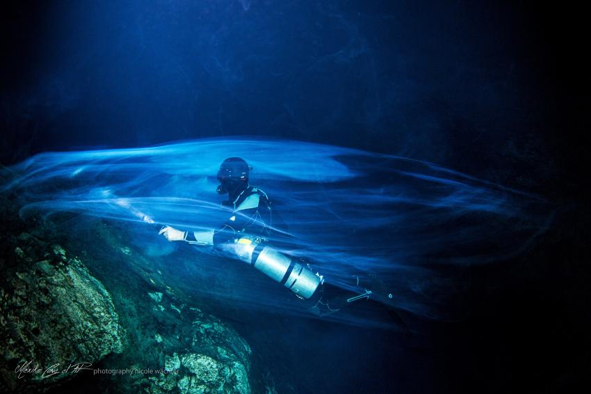The Colud in THE PIT, Cenote-Diving.Com, Mexiko