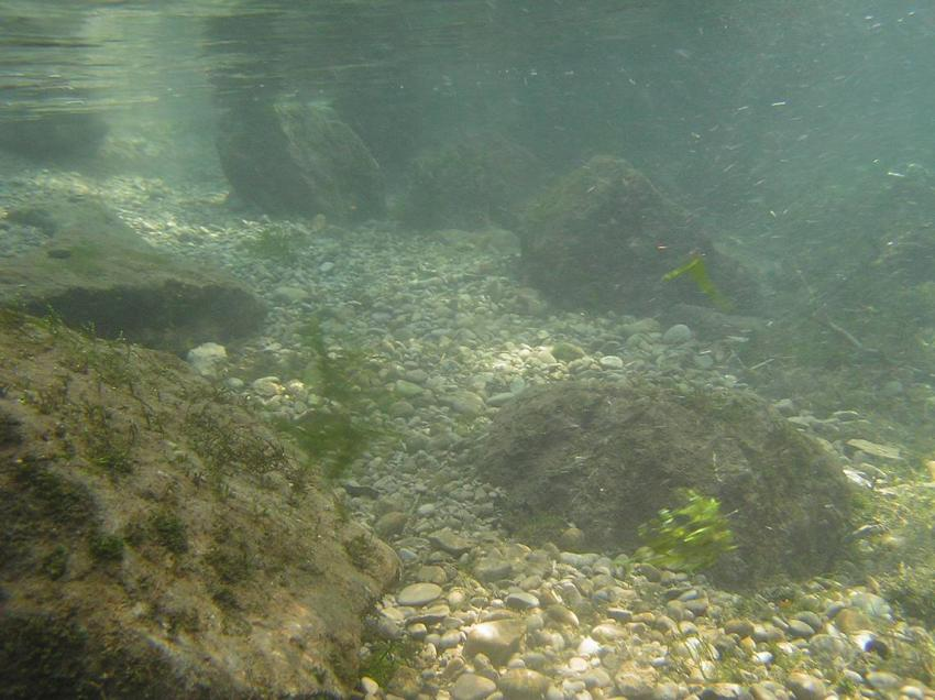Wertach Nebenfluss, Wertach Nebenfluss,Bayern,Deutschland,Wertach,Nebenfluss,fluss,schotter