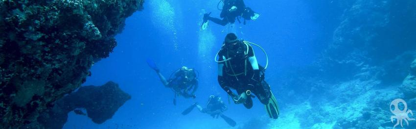 Roctopus Dive, Koh Tao, Thailand, Golf von Thailand