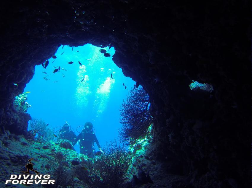 Tauchen in Hurghada, Tauchen in Hurghada, Diving Forever Hurghada, Ägypten, Hurghada