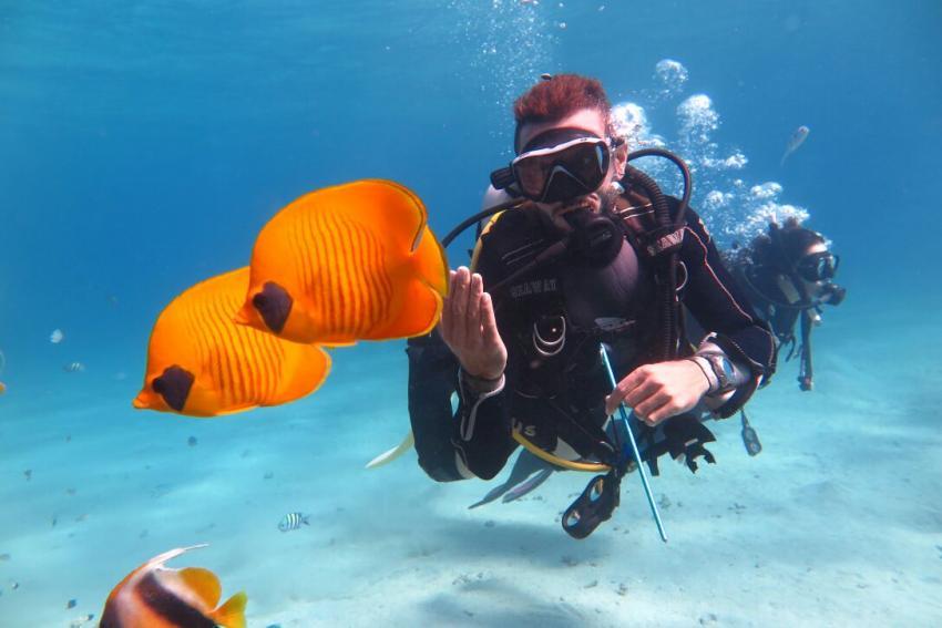 SWDS7, Tauchen in El Quseir, Scuba World Divers El Quseir, SENTIDO Oriental Dream Resort, Ägypten, El Quseir bis Port Ghalib