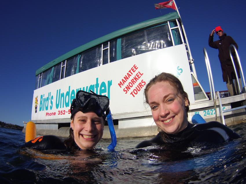 Photo memories, Photo Manatees, Bird`s Underwater Dive Center, Crystal River, USA, Florida