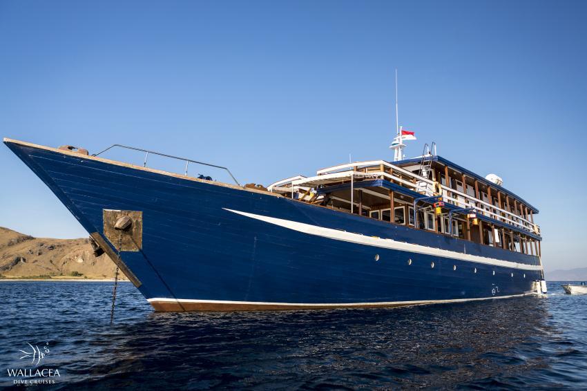 Mv Ambai (Wallacea dive cruise), indonesia, raja ampat, komodo, liveaboard, tauchen, MV Ambai, Indonesien