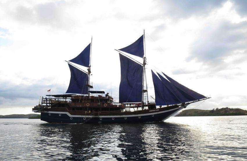 M/S CHENG HO, Sea Safari Cruises, SSC, CHENG HO, Indonesien, Liveaboard, Bali, Komodo, Raja Ampat, Lombok, Lembeh Street, Cheng Ho, Allgemein