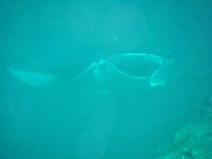 Meeru und Umgebung, Meeru,Malediven