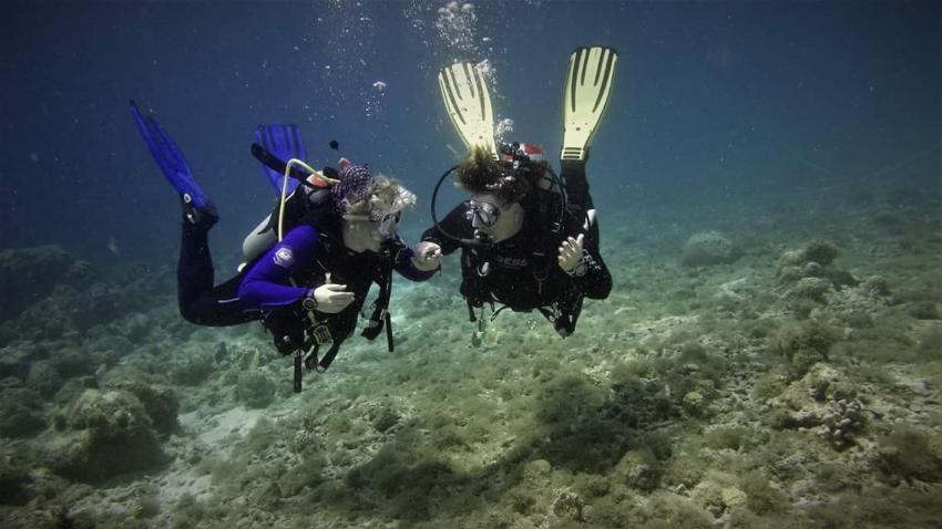2 unserer Truppe, Coral Divers, Niederländische Antillen, Curaçao