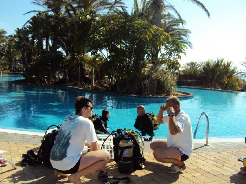 Tauchkurse - Delphinus Fuerteventura, Tauchkurse fuerteventura, Tauchschule fuerteventura, tauchbasis costa calma, Delphinus Diving School Fuerteventura, Spanien, Kanarische Inseln