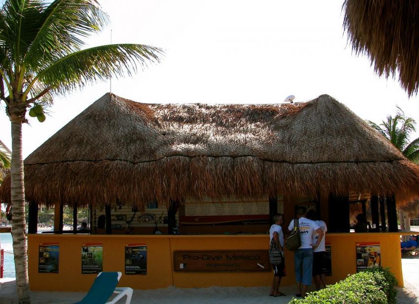 Pro Dive´s Basis im Catalonia Riviera Maya & Yucatan Beach, Pro Dive Mexico, Catalonia Riviera Maya & Yucatan Beach, Puerto Aventuras, Mexiko