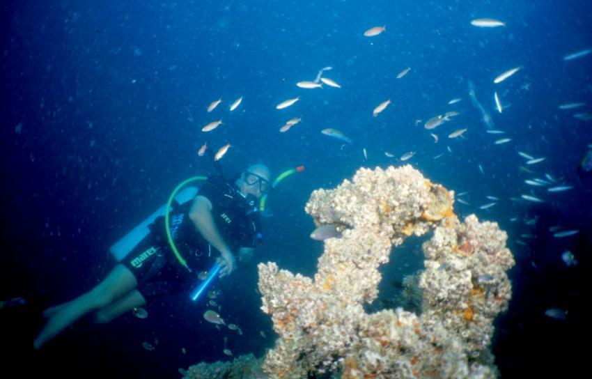 Paradise Diving Nai Yang, Nai Yang,Thailand