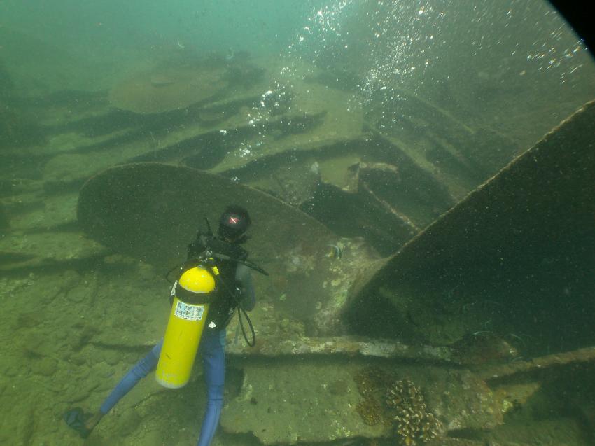 Taucher mit Schraube, LSR Diving Passikuda, Sri Lanka