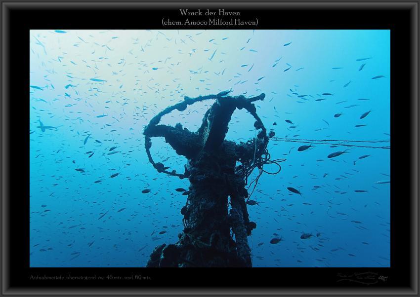 Wrack Haven, 250mtr lang, 50mtr breit, Abbruchkante Bugbereich, große Fischnetze, Aufbauten usw., Wrack Haven (ehem. Amoco Milford Haven),Italien,Wrack,Oberdeck,Fischschwarm